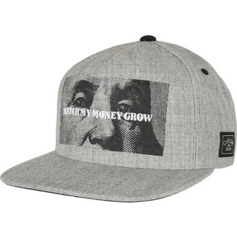 Cayler & Sons Flat Brim WL Watch It Grow Grey Snapback Cap